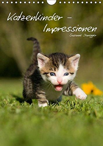 Katzenkinder - Impressionen (Wandkalender 2017 DIN A4 hoch): Kleine Katzen ganz groß. (Planer, 14 Seiten) (CALVENDO Tiere)