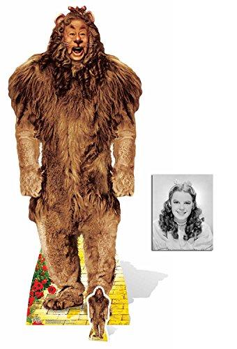 Fan Pack - der feige Löwe (Bert Lahr) von Der Zauberer von Oz (Wizard of Oz) Lebensgrosse und klein Pappfiguren / Stehplatzinhaber / Aufsteller - Enthält 8X10 (25X20Cm) starfoto