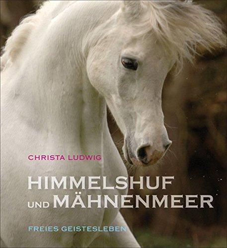 Preisvergleich Produktbild Himmelshuf und Mähnenmeer: Drei Pferde-Fotogeschichten.