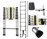 Todeco - Teleskopleiter, Klappleiter - Maximale Belastbarkeit: 150 kg - Anzahl der Stufen: 9-2,6 Meter, Extra gap, GRATIS Tragetasche, EN 131-6