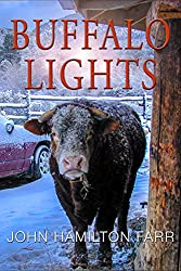 Buffalo Lights