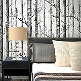 Wallpaper, Wallpaper Nordic-Stil Wald Liestapete Schwarz-Weiß-Baumstamm Birke Wald Sofa T Bettdecke Hintergrund Tapete 10 * 0.53M