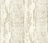 A.S. Création Vliestapete Best of Wood`n Stone 2nd Edition Tapete in Vintage Holz Optik fotorealistische Holztapete maritim 10,05 m x 0,53 m beige creme Made in Germany 354135 35413-5