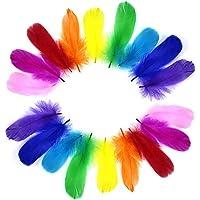 YouU Plumes Colorées, 200 Pièces Naturel Multicolore Plume Décoration pour DIY Arts Crafts, Idéal pour Costumes…