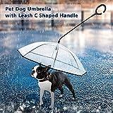 Weehey Ombrello per Cane con guinzaglio a Forma di C Retrattile Maniglia per sterzo Ombrello per Cane a Passeggio Proteggi Animali in Giorno di Pioggia
