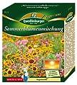 Quedlinburger Sommerblumenmischung von Quedlinburger - Du und dein Garten