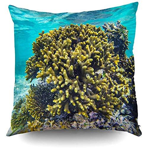 Ducan Lincoln Pillow Case 2PC 18X18,Dekokissenbezug Deckt Afrika Tauchen Unterwasser Korallenfische Im Urlaub Schnorcheln EIN Ostern Beide Seiten Drucken Zip Kissenbezüge Kissen -