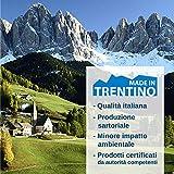 Allergosystem 0155080N Copricuscino Antiacaro Nuvola, 50X80Cm
