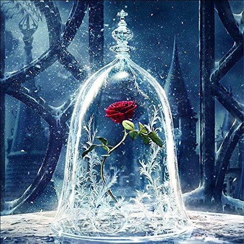 MXJSUA DIY 5D Diamant Malerei Kits Full Bohrer Rund Kristall Strass Stickerei Bilder Arts Craft für Home Wand Decor Geschenk Rose Unter Glas Cover 30,5x 30,5cm - Glas-cube-bild