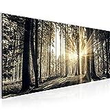 Bilder Wald Bild - Vlies Leinwand - Kunstdrucke - Wandbild