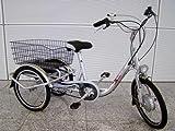 GermanXia - Bicicleta eléctrica (10 Ah, 3 velocidades, 250 W, 20')