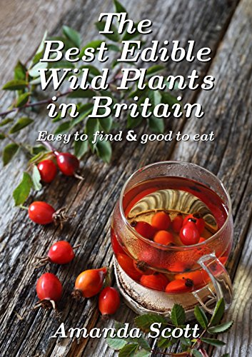 The Best Edible Wild Plants in Britain: Easy to find & good to eat book cover
