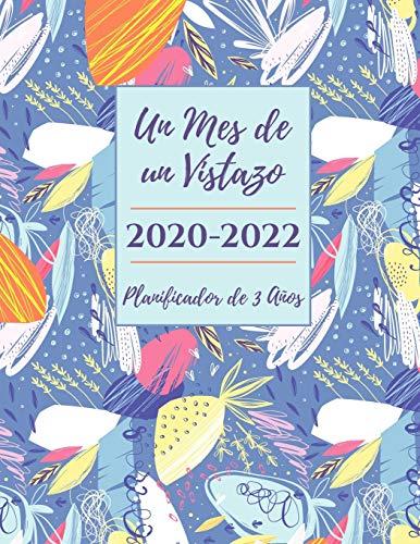Un Mes de un Vistazo 2020-2022 Calendario de 3 Años, Planificador y Organizador Diario: Organizador de Agenda Mensual - Agenda para 3 Años, Mes por Página Calendario, Cuaderno de Regalos para Citas