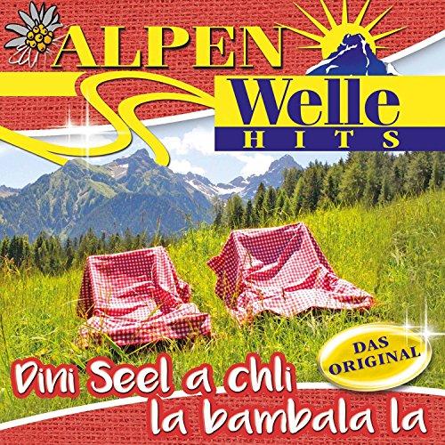 Alpenwelle Hits- Dini Seel a c...
