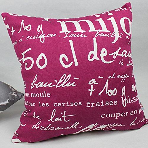 cuscini del divano/cuscino lombare Ufficio/schienale Comodino/copertura del cuscino vita Car-A (Rosa Car Care)