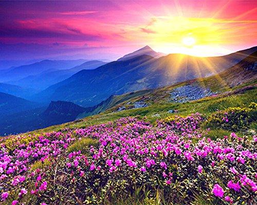 zhenc 5D DIY quadratisch Diamant Malen Zeichnen Basteln Sunshine Berge lila Blumen Landschaft Stickerei Naht Voll Bohrer Decor Kreuzstich Kits 40x50CM (Wenn Ist über Den Berg)