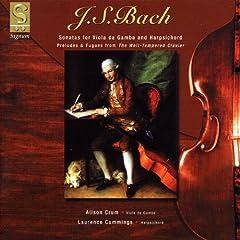 Sonata in D major, BWV 1028: (Allegro)