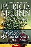 Wyoming Wildflowers: The Beginning: Prequel to Wyoming Wildflowers Series