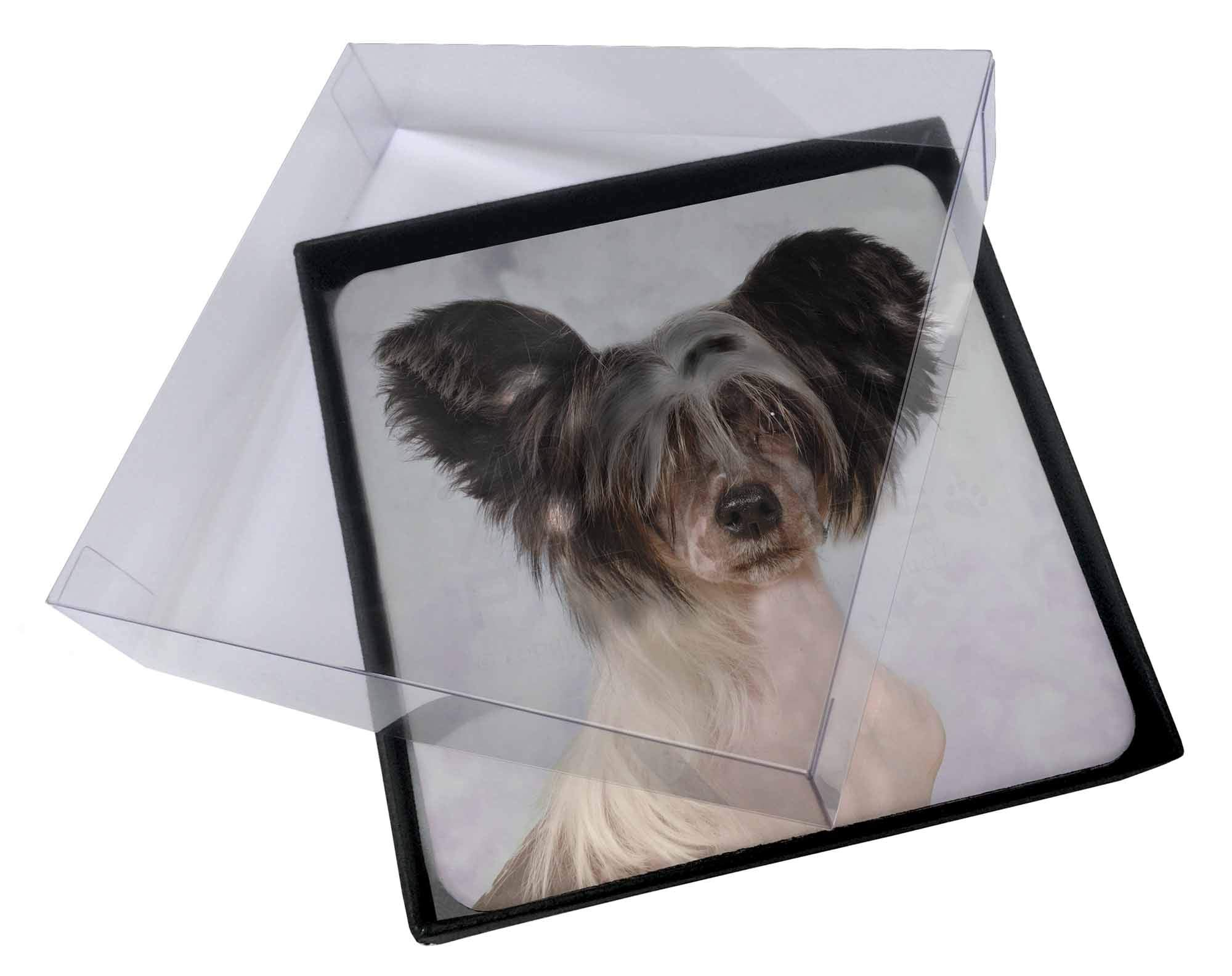 Advanta Group 4x Chinese Crested Dog Picture Table Coasters Set in Gift Box
