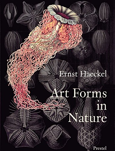 Art Forms in Nature: The Prints of Ernst Haeckel: Prints of Ernst Haekel (Monographs) por Olaf Breidbach