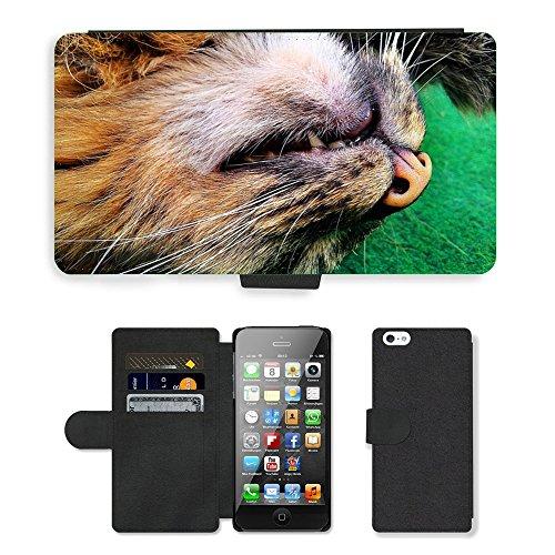 GoGoMobile PU Leather Flip Custodia Protettiva Case Cover per // M00118535 Cat Hangover de couchage // Apple iPhone 5 5S 5G