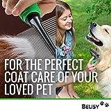 BELISY Hundebürsten & Katzenbürsten-Set – leichtes Entfernen von Unterwolle & Verfilzungen – mit Hunde-Kamm/Katzen-Kamm – angenehmer Massage Effekt & perfekte Fell-Pflege – 100% Zufriedenheitsgarantie - 2