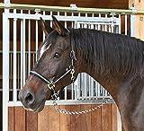 Kerbl Halfter Mustang 2-Fach verstellbar
