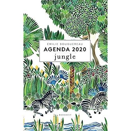 Agenda 2020 - Jungle
