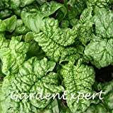 50pcs verde Spinaci Spinaci Semi Bloomsdale Vegetable Seeds giardino domestico di DIY BonsaïPianta