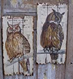 Unbekannt 2er Set Holz WANDDEKO WANDBOARD Eule Vintage LANDHAUSSTIL Shabby EULEN 70cm WO-703