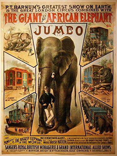 Spiffing Prints Jumbo Circus Elephant - Extra Large - Matte Print