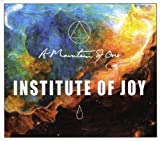 Songtexte von A Mountain of One - Institute of Joy