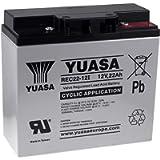 Yuasa - Cyclic lead 12V 22Ah REC22-12I Yuasa battery - REC22-12I
