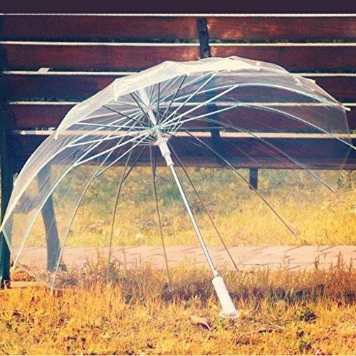 XIN 16 Knochen Regenschirm Retro transparenter Regenschirm Langer Griff transparenter Regenschirm kreativer Regenschirm,BAI,Gekrümmte Stange (Gekrümmte Stange Dusche)