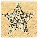 florilèges Design fd216067Stempel Stern in Punkten Holz 5x 5x 2,5cm