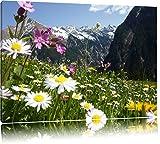 Wunderschöne Blumen Alpenwiese Format: 60x40 auf Leinwand, XXL riesige Bilder fertig gerahmt mit Keilrahmen, Kunstdruck auf Wandbild mit Rahmen, günstiger als Gemälde oder Ölbild, kein Poster oder Plakat