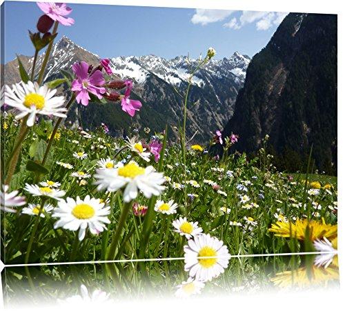 Preisvergleich Produktbild Wunderschöne Blumen Alpenwiese Format: 60x40 auf Leinwand,  XXL riesige Bilder fertig gerahmt mit Keilrahmen,  Kunstdruck auf Wandbild mit Rahmen,  günstiger als Gemälde oder Ölbild,  kein Poster oder Plakat