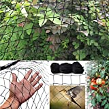 #5: ARMOR Pigeon / Bird Net 10ftx6ft (60 Sq Ft) High Quality UV-Stabilized HDPE Nylon Bird Mesh(BLACK) With Free 25pcs Plastic Cable Clips & Tying Ropes