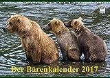 Der Bärenkalender 2017 (Tischkalender 2017 DIN A5 quer): Grizzlybären - ein Fotoshooting der besonderen Art (Monatskalender, 14 Seiten ) (CALVENDO Tiere) - Max Steinwald