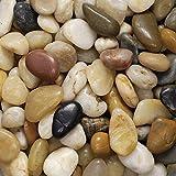 Flusskiesel 8-25 mm (1 kg) - farblich sortiert