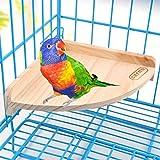 Holzplattform Spielplatz für Vögel, Papageien, Aras, Graupapageien, Wellensittiche, Sittiche, Hamster, Rennmäuse, Ratten, Mäuse, Käfigzubehör, Beschäftigungsspielzeug