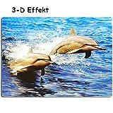 alles-meine GmbH 3-D Effekt _ Unterlage -  Delfine & Fische / Korallenriff - Meeresbewohner  ..