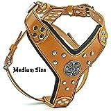 Bestia |Maximus| Leder Brustgeschirr für große Hunde. Bis 145 cm Brustumfang. 100% Leder. Handgefertigt. Top Qualität