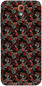 The Racoon Grip printed designer hard back mobile phone case cover for HTC Desire 620g. (Night Stra)
