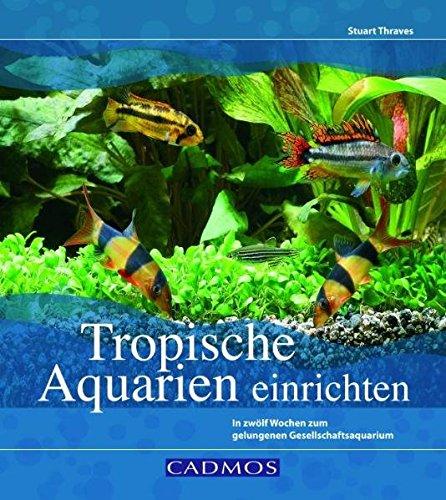 Tropische Aquarien einrichten: In zwölf Wochen zum gelungenen Gesellschaftsaquarium (Cadmos...