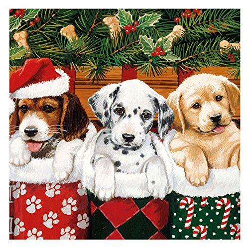 Ambiente Servilleta Motivo : Perritos - Perros en la Media - Servilleta navidad - 20 servilletas por paquete, 33x33 cm