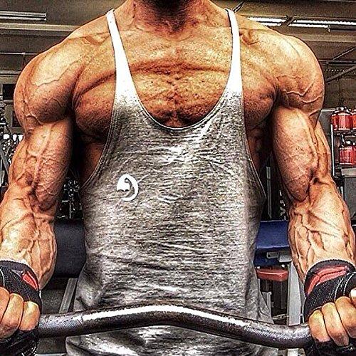 Blaze Men's Cotton Stringer Gym Tank Top Vest Sports Wear (Grey, Large)
