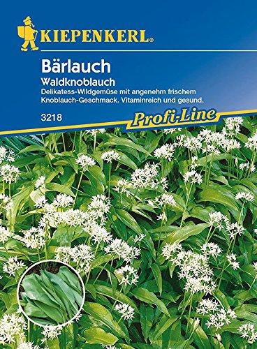 Bärlauch-Saatgut: Bärlauch / Waldknoblauch, Allium ursinum - 1 Portion