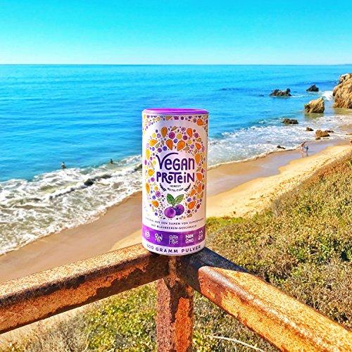 Vegan Protein (Blaubeere) - Protein aus Reis, Hanfsamen, Lupinen, Erbsen, Chia-Samen, Leinsamen, Amaranth, Sonnenblumen- und Kürbiskernen - 600 Gramm Pulver mit natürlichem Blaubeeren Geschmack - 4