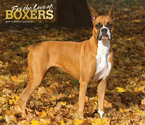 Boxers - For the love of Boxer 2019 - 18-Monatskalender mit freier DogDays-App: Original BrownTrout-Kalender - Deluxe por Inc. Browntrout Publishers